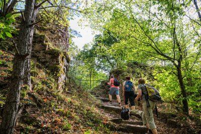 L'Alsace, c'est aussi : Randonnée pédestre